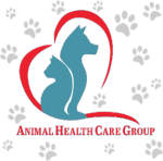 Miami Springs Animal Hospital